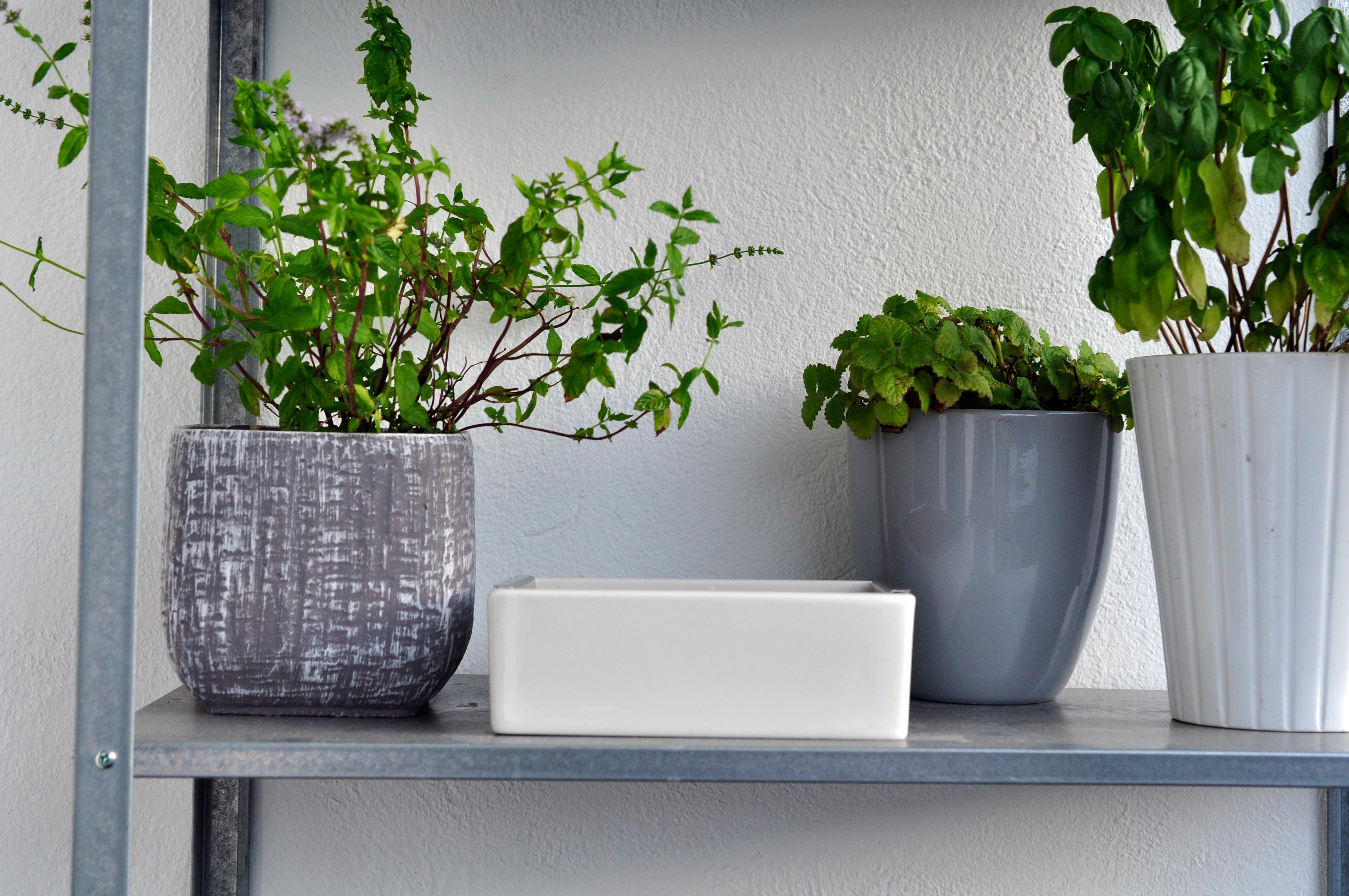 willkommen auf liebkost ein foodblog aus d sseldorf auf dieser seite findet ihr jede menge. Black Bedroom Furniture Sets. Home Design Ideas